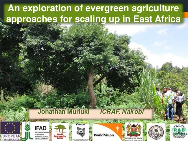 An exploration of evergreen agriculture approaches for scaling up in East Africa Jonathan Muriuki ICRAF, Nairobi