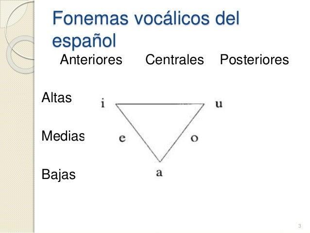 Nivel de analisis fonetico - fonologico Slide 3