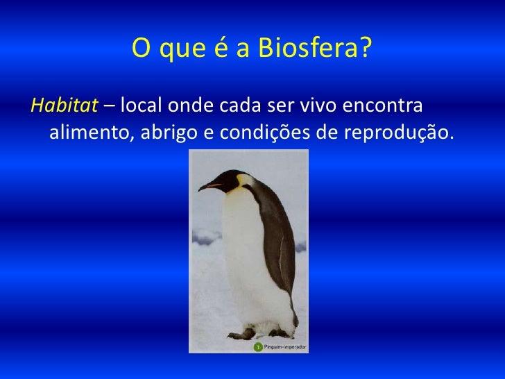 02 o que a biosfera for Esternotomia o que e