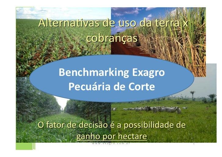 Benchmarking Exagro   Pecuária de Corte         w w w . e x a g r o . c o m . b ...