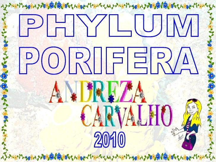 PHYLUM 2010 PORIFERA