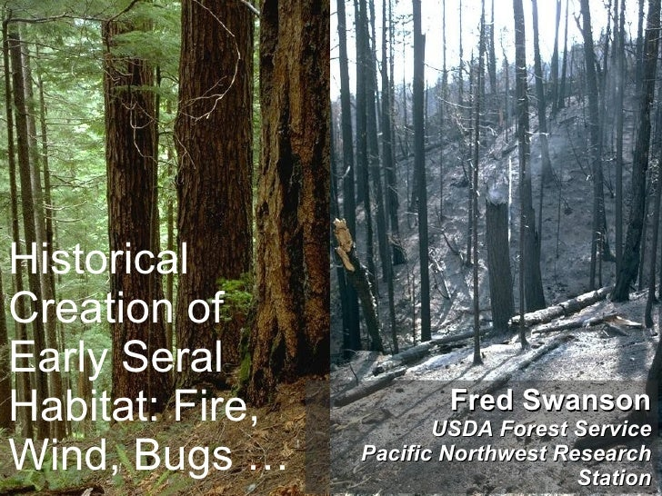 Historical Creation of Early Seral Habitat: Fire, Wind, Bugs … Fred Swanson USDA Forest Service Pacific Northwest Research...