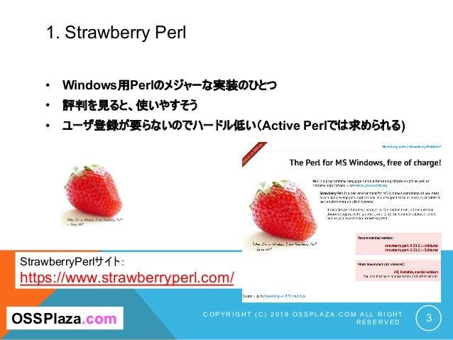 1. Strawberry Perl C O P Y R I G H T ( C ) 2 0 1 9 O S S P L A Z A . C O M A L L R I G H T R E S E R V E D . 3OSSPlaza.com...