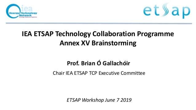 IEA ETSAP Technology Collaboration Programme Annex XV Brainstorming Prof. Brian Ó Gallachóir Chair IEA ETSAP TCP Executive...