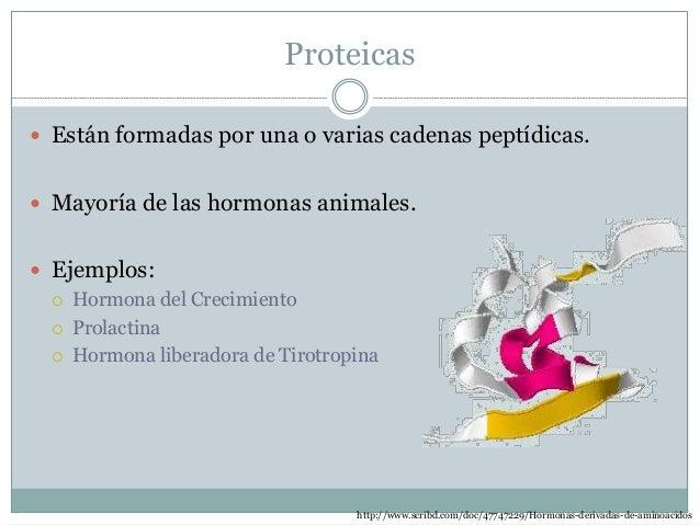 Derivadas de aminoácidos  Estos se derivan del aminoácido tirosina y del triptófano.  Ejemplos:  Tiroxina (Tyr)  Adren...