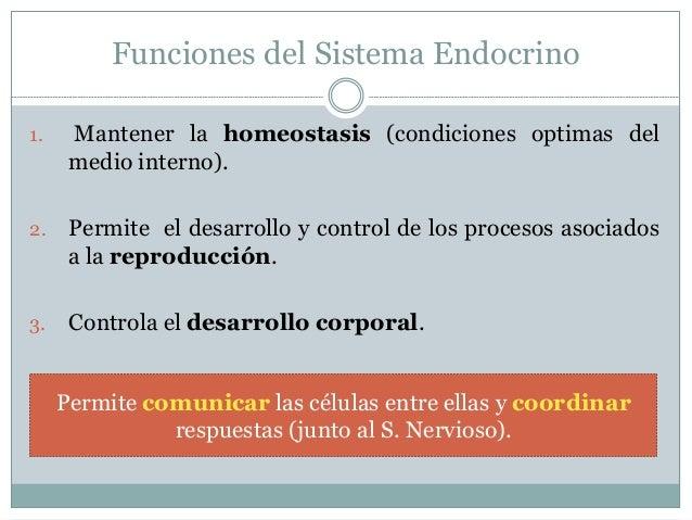 Glándula  Estructura que es capaz de producir y/o secretar una sustancia.  Existen 2 tipos principales:  Endocrinas  E...