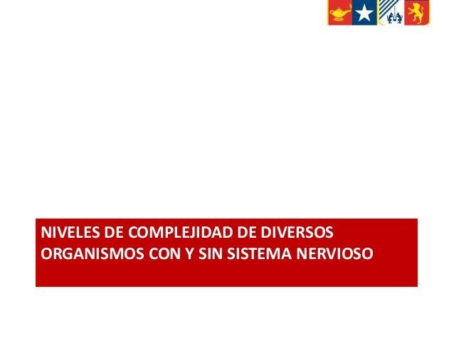 NIVELES DE COMPLEJIDAD DE DIVERSOS ORGANISMOS CON Y SIN SISTEMA NERVIOSO