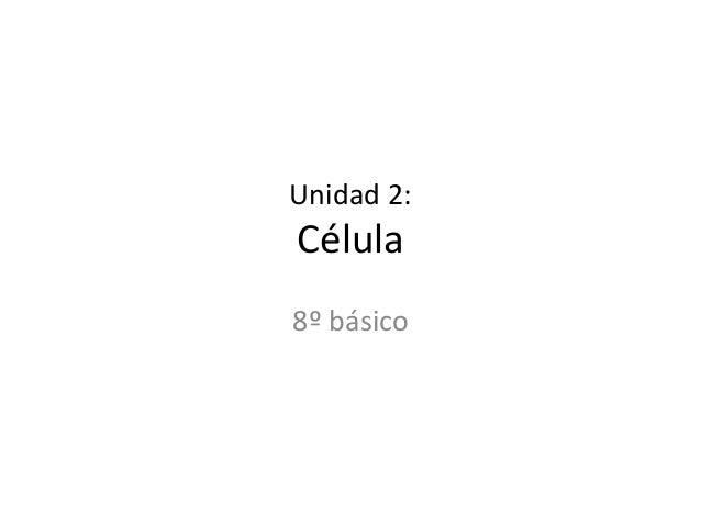 Unidad 2: Célula 8º básico