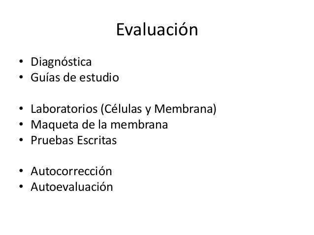 Evaluación • Diagnóstica • Guías de estudio • Laboratorios (Células y Membrana) • Maqueta de la membrana • Pruebas Escrita...