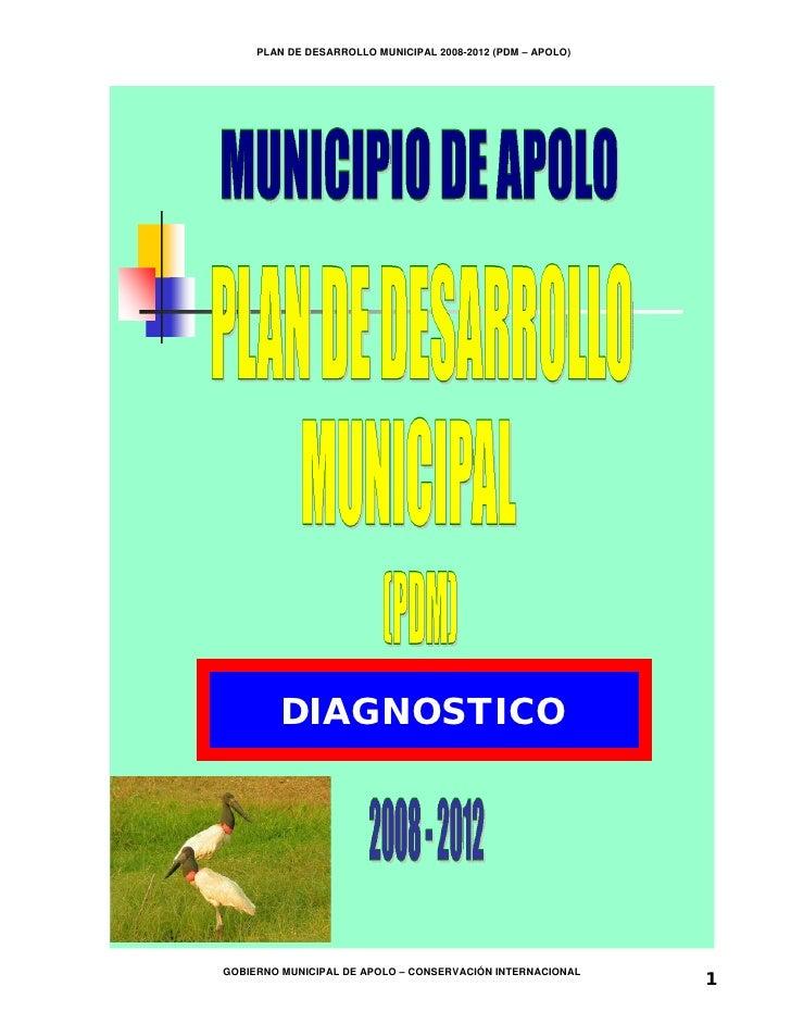 PLAN DE DESARROLLO MUNICIPAL 2008-2012 (PDM – APOLO)         DIAGNOSTICO                                                  ...