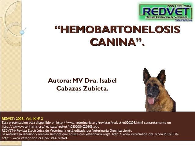 """""""HEMOBARTONELOSIS CANINA"""".  Autora: MV Dra. Isabel Cabazas Zubieta.  REDVET: 2008, Vol. IX Nº 2 Esta presentación está dis..."""