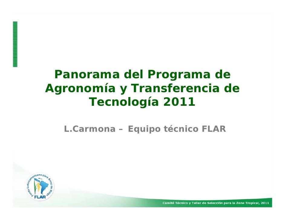 Panorama del Programa deAgronomía y Transferencia de      Tecnología 2011  L.Carmona – Equipo técnico FLAR