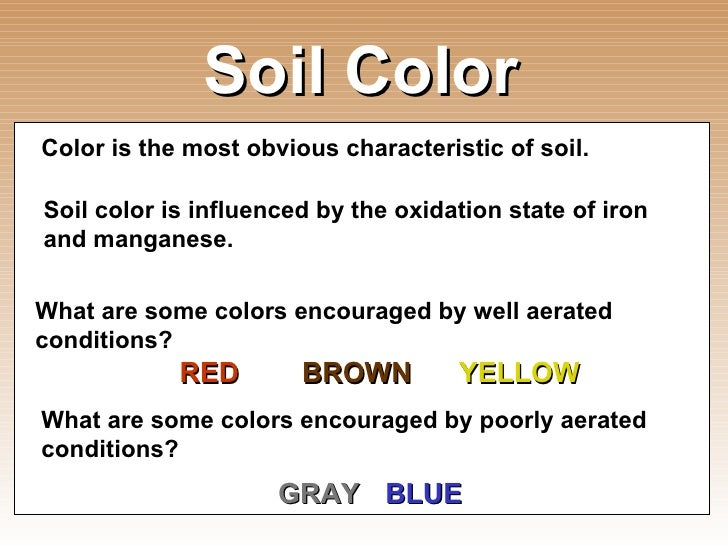 Introduction to soil science for Soil yellow color