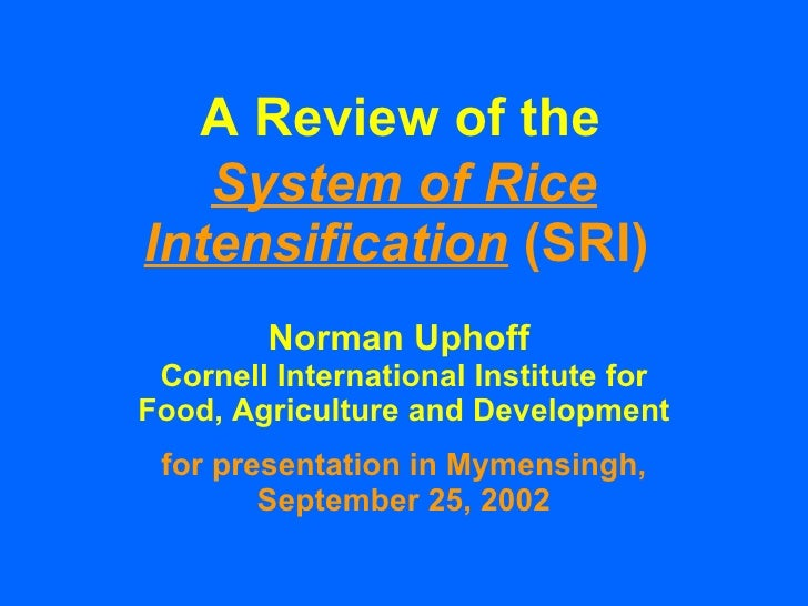 thesis on system of rice intensification Nancy j amdahl thesis on system of rice intensification study on system of rice intensification in transplanted and direct r-2009-agr-03 m, under my supervision.