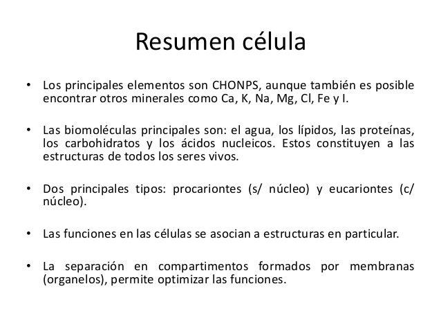 Membrana celular Slide 2