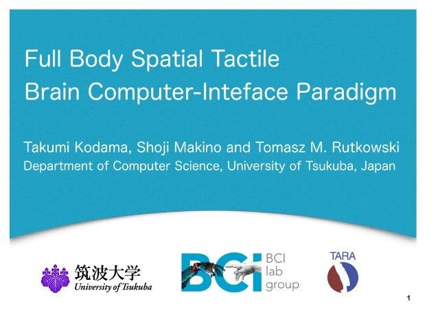 Full Body Tactile Brain-Computer Interface