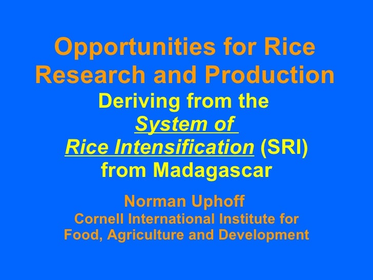 Opportunities for Rice Research and Production Deriving from the  System of  Rice Intensification  (SRI) from Madagascar N...