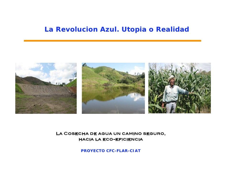 La Revolucion Azul. Utopia o Realidad  La Cosecha de agua un camino seguro,         hacia la eco-eficiencia          PROYE...