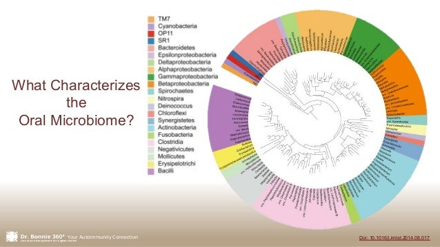 Your Autoimmunity Connection Doi: 10.1016/j.imlet.2014.08.017 What Characterizes the Oral Microbiome?