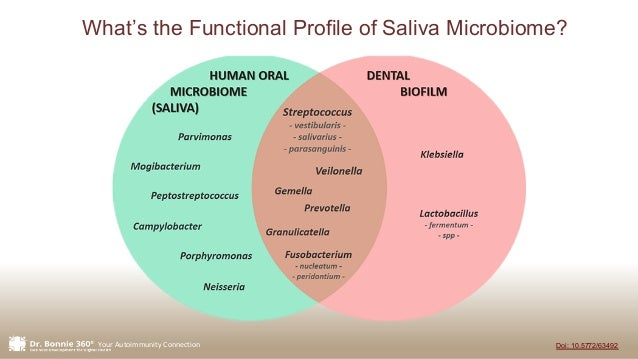 Your Autoimmunity Connection Doi: 10.5772/63492 What's the Functional Profile of Saliva Microbiome?