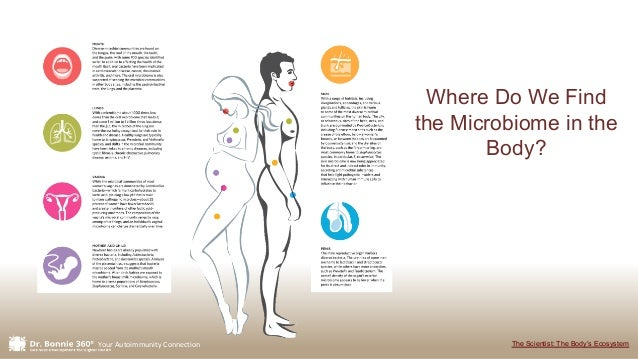 Your Autoimmunity Connection Where Do We Find the Microbiome in the Body? The Scientist: The Body's Ecosystem