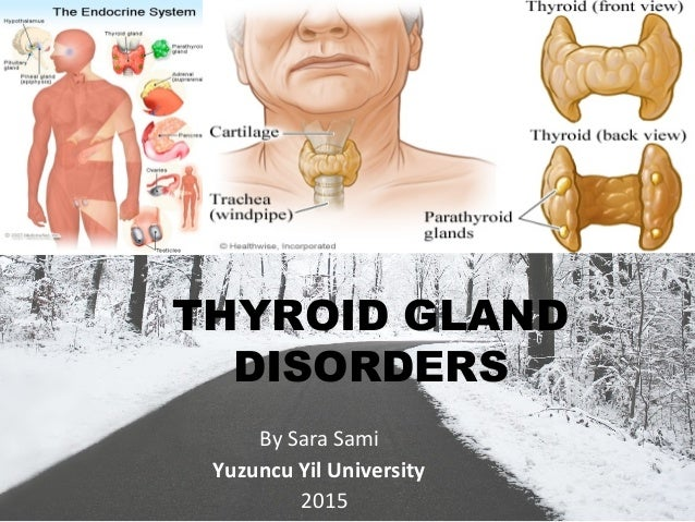 THYROID GLAND DISORDERS By Sara Sami Yuzuncu Yil University 2015