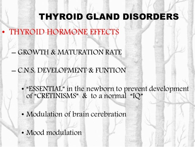 THYROID GLAND DISORDERS • THYROID HORMONE EFFECTS - FAT & PROTEIN METABOLISM • Increase lipolysis and lipid mobilization w...