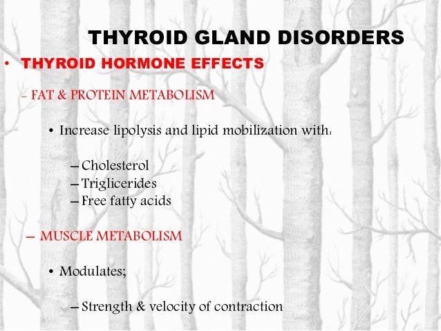 THYROID GLAND DISORDERS • THYROID HORMONE EFFECTS – ELECTROLYTE BALANCE • Low Thyroid hormones could induce hyponatremia –...