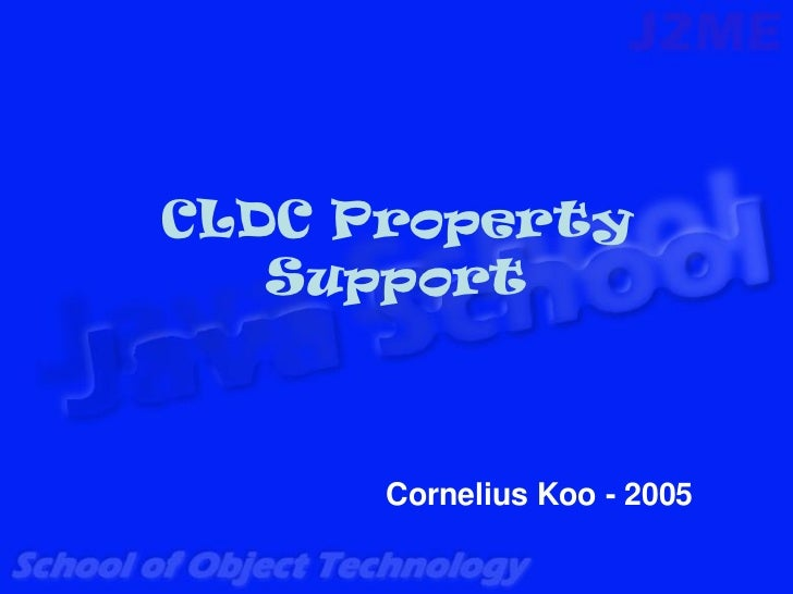CLDC Property   Support      Cornelius Koo - 2005