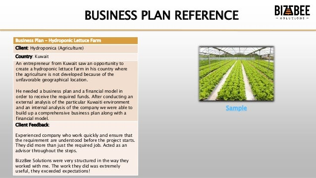 Business Plan - Service Overview