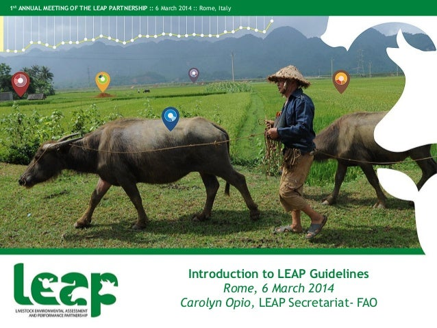 1st ANNUAL MEETING OF THE LEAP PARTNERSHIP :: 6 March 2014 :: Rome, Italy Introduction to LEAP Guidelines Rome, 6 March 20...