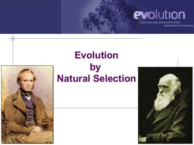 Evolution                    by             Natural SelectionAP Biology                       2006-2007