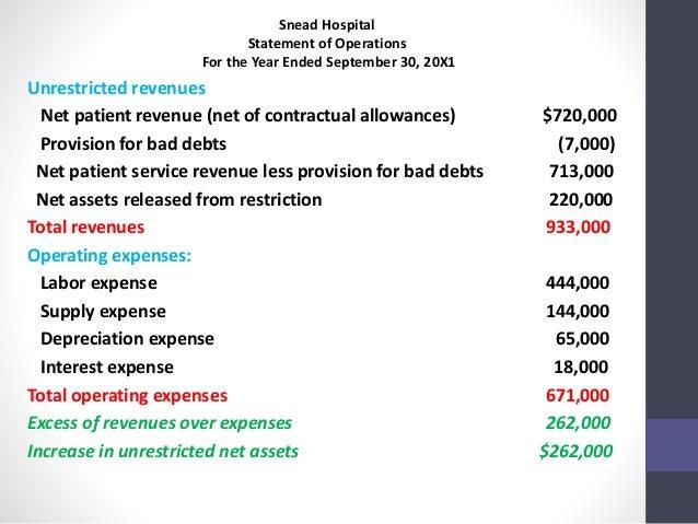 Home Health Care Income Statement