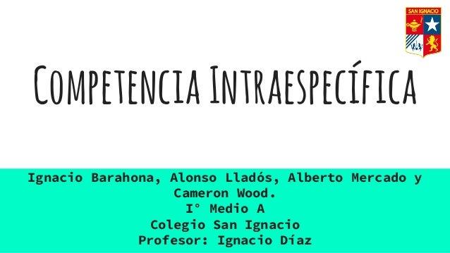 CompetenciaIntraespecífica Ignacio Barahona, Alonso Lladós, Alberto Mercado y Cameron Wood. I° Medio A Colegio San Ignacio...