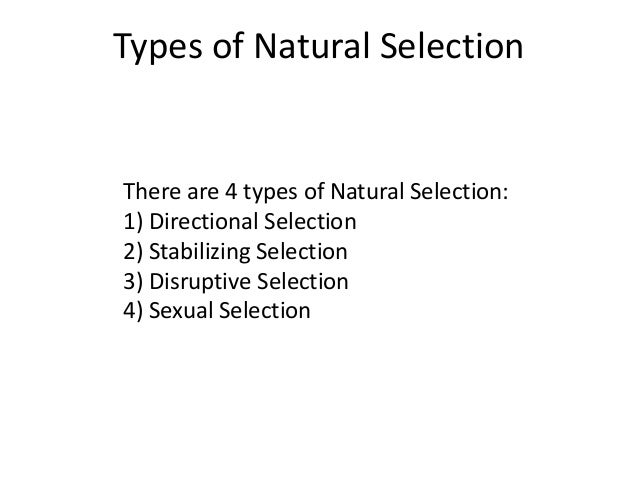 types of nature
