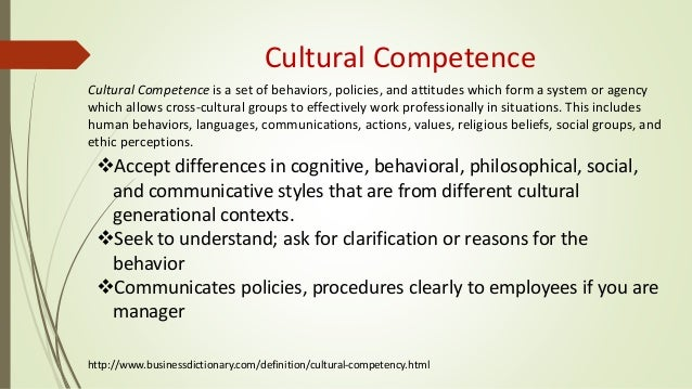cross cultural differences company x essay
