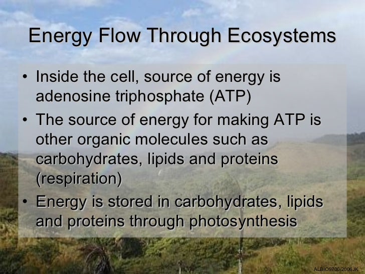 Energy Flow Through Ecosystems• Inside the cell, source of energy is  adenosine triphosphate (ATP)• The source of energy f...