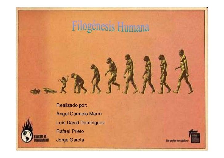 Realizado por: Ángel Carmelo Marín Luís David Domínguez Rafael Prieto Jorge García
