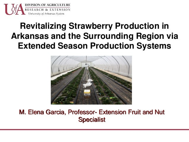 Revitalizing Strawberry Production in Arkansas and the Surrounding Region via Extended Season Production Systems M. Elena ...