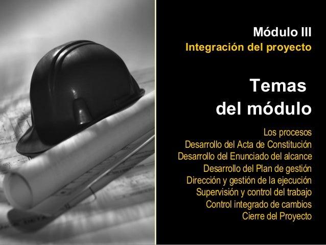 Módulo III  Integración del proyecto              Temas          del módulo                        Los procesos Desarrollo...