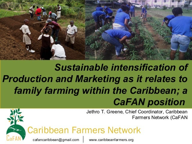 Sustainable intensification of Production and Marketing as it relates to family farming within the Caribbean; a CaFAN posi...