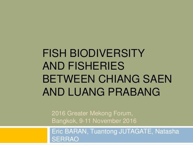 FISH BIODIVERSITY AND FISHERIES BETWEEN CHIANG SAEN AND LUANG PRABANG Eric BARAN, Tuantong JUTAGATE, Natasha SERRAO 2016 G...