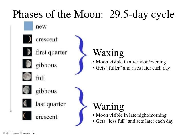 """© 2010 Pearson Education, Inc. Phases of the Moon: 29.5-day cycle Waxing • Moon visible in afternoon/evening • Gets """"fulle..."""