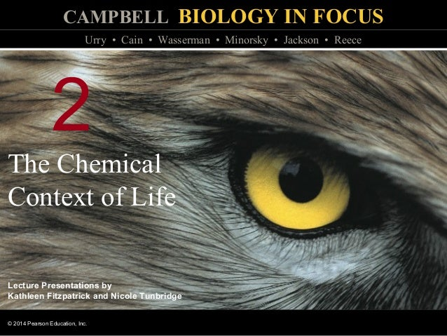 Biology In Focus Chapter 2