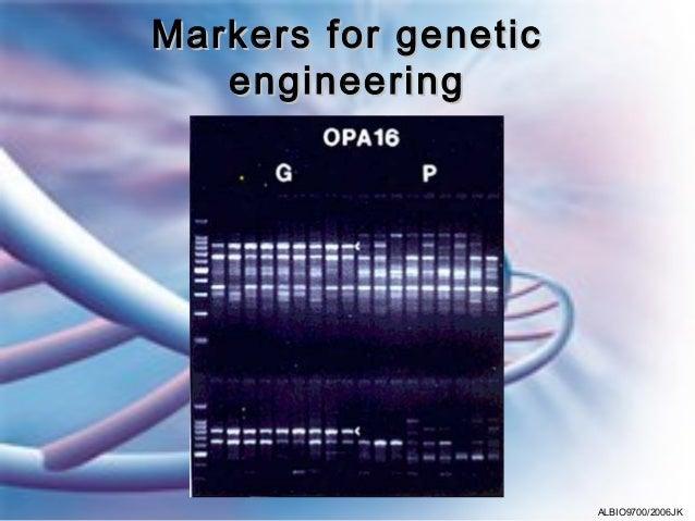 Markers for genetic   engineering                      ALBIO9700/2006JK