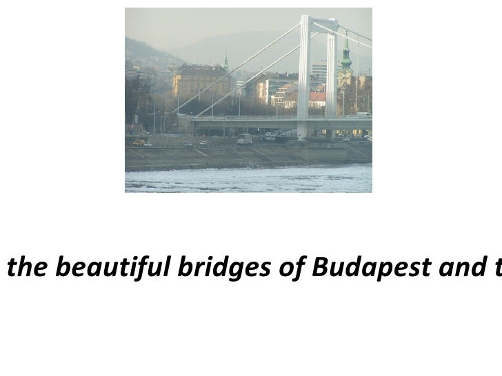 The fascinating coincidences between the beautiful bridges of Budapest and the history of our beautiful profession