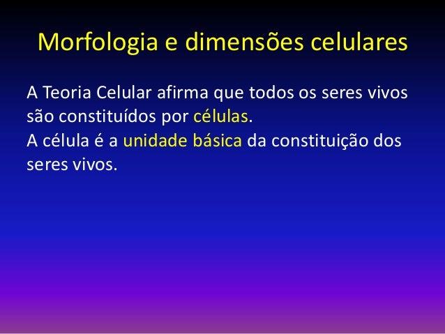 Morfologia e dimensões celulares A Teoria Celular afirma que todos os seres vivos são constituídos por células. A célula é...