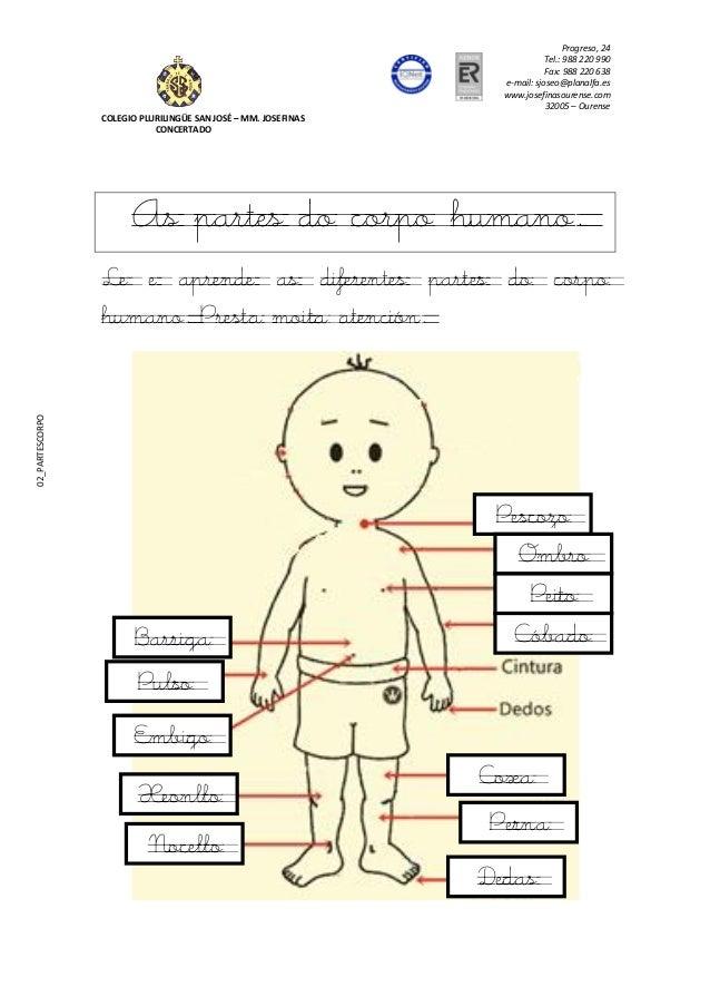 Progreso, 24  Tel.: 988 220 990  Fax: 988 220 638  e-mail: sjoseo@planalfa.es  www.josefinasourense.com  32005 – Ourense  ...