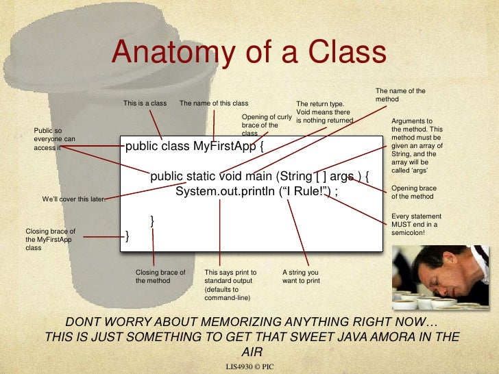 Anatomy of a Class<br />LIS4930 © PIC<br />The name of the method<br />The name of this class<br />This is a class<br />Th...
