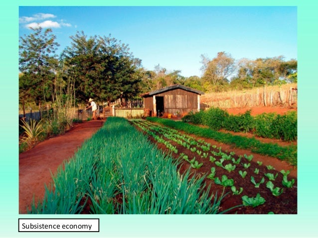 primary sector introduction and conclusion 6 conclusion the agricultural sector is of vital importance for the region it is  undergoing a process of transition to a market economy, with substantial  changes.